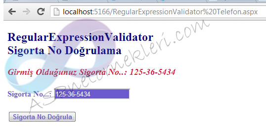 RegularExpressionValidator 1