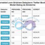 GridView Seçilen Satırın Detaylarını Twitter Bootstrap Kullanarak Modal Popup ile Gösterme