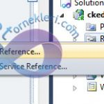 Asp.Net CkEditor Kurulumu ve CkEditor Kullanımı