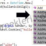 Asp.net Cookie (Çerez) Süresini Ayarlama