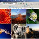 Asp.Net Klasördeki Resimleri Gösterme