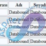 ASP.NET MySQL Kayıtları Listeleme