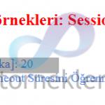 Asp.net Session Süresini Öğrenme (Session.Timeout)