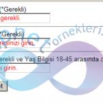 Asp.Net Validation Hata Mesajlarını TextBox İçinde Gösterme